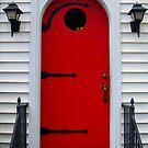 Dr. Z's Red Door by Debbie Robbins