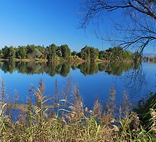 Hawksbury Reflections by Terry Everson