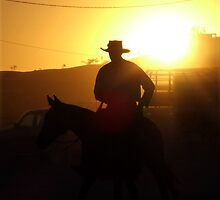 Campdrafting Sun.. by Penny Kittel