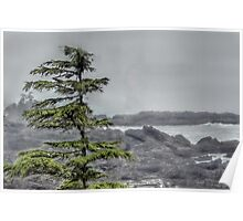 Wind Blown Inlet Poster
