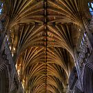 Exeter Cathedral Ceiling by ajgosling