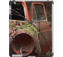 Hide and Seek II iPad Case/Skin