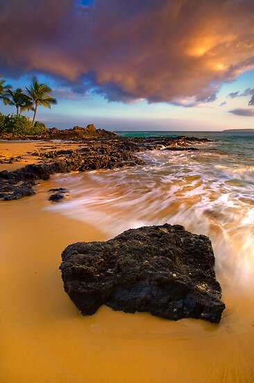 Steadfast in Pa'ako by Ken Wright