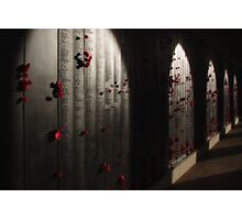 Roll of Honour Photographic Print