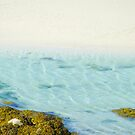 Ripples of the Tide by jacqi