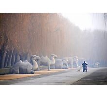 Chang Ping - 明十三陵 - Main sacred way to the Ming tombs. Photographic Print