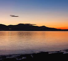 Dusk and Dolphins in Hobart by Suellen Cook