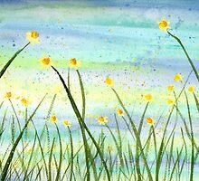 Field of Hope by klbailey