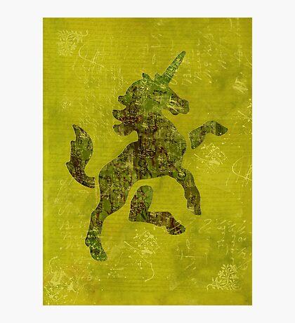 Unicorn Fresco Photographic Print
