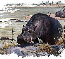 Painting of a hippopotamus by marmur