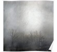 Mist in the trees Poster
