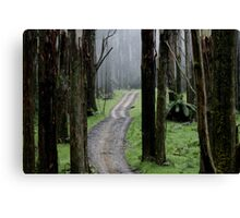 Bicentennial National Trail - Healesville end (Victoria) Canvas Print
