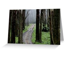 Bicentennial National Trail - Healesville end (Victoria) Greeting Card