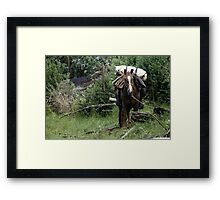 Ready to ride out  Framed Print