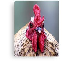 Ruler of his Roost Canvas Print