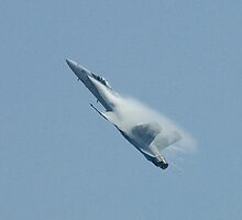 Hornet's Mist by OntheroadImage
