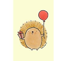 Happy Birthday Hedgehog Photographic Print