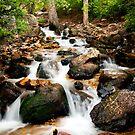 Lower Hidden Falls by Sam Scholes