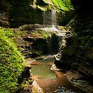 Rainbow Falls by Sam Scholes