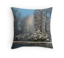 Rainbow fountain in snowy park Throw Pillow