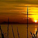 Living til Sundown...... Here in Heaven by Lyndy
