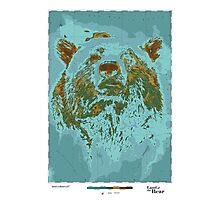 Land of the Bear Photographic Print