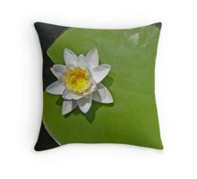 White lily on its pad Throw Pillow