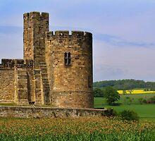 Alnwick Castle by Carol Bleasdale