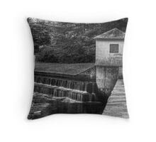 Dam and Overflow Throw Pillow