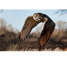 Flight of the Eagle Owl Photographic Print