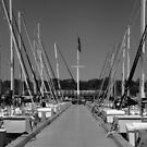 On The Docks by Carrie Bonham