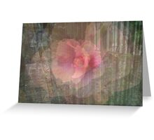 flower dimensions Greeting Card