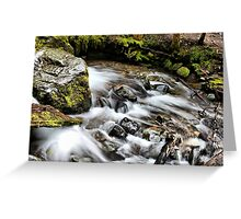 Rainier Trail Waterfall Greeting Card