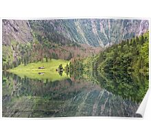 Nature's Mirror Poster