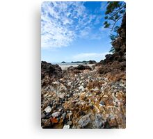 A rocky treck to the Beach Canvas Print