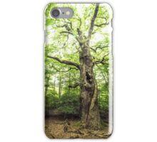 Morfelden  iPhone Case/Skin