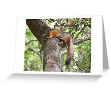 Relaxed Greeting Card