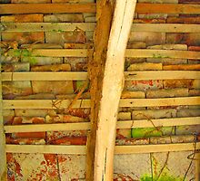 Underside of old roof in France by Mary Taylor