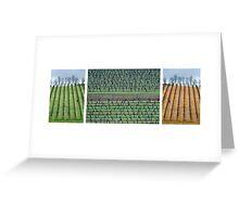 Vineyard Compilation Greeting Card