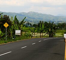 On the Long Green Road, West Sumatra by Ashlee Betteridge