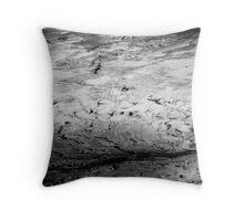 Lunar Pathway Throw Pillow