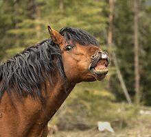 Whew...Big Whiff! by JamesA1