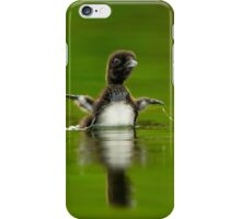 Loon Chick 11 iPhone Case/Skin