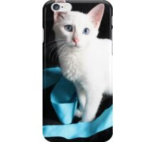 White Kitten with Blue Ribbon iPhone Case/Skin