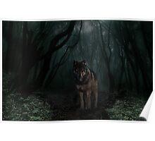 Forever Forest Poster
