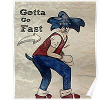 Gotta go fast!  Poster