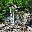Kaaterskill Falls 2015 by John Schneider