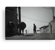 Cows & shepherd Canvas Print