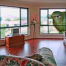 My Loungeroom by Kym Howard