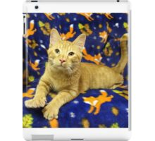 Orange Cat Highlighted with Royal Blue iPad Case/Skin